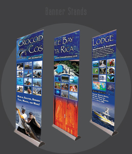 Crocodile Bay 7ft Banner Stands